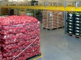Склад фруктов и овощей